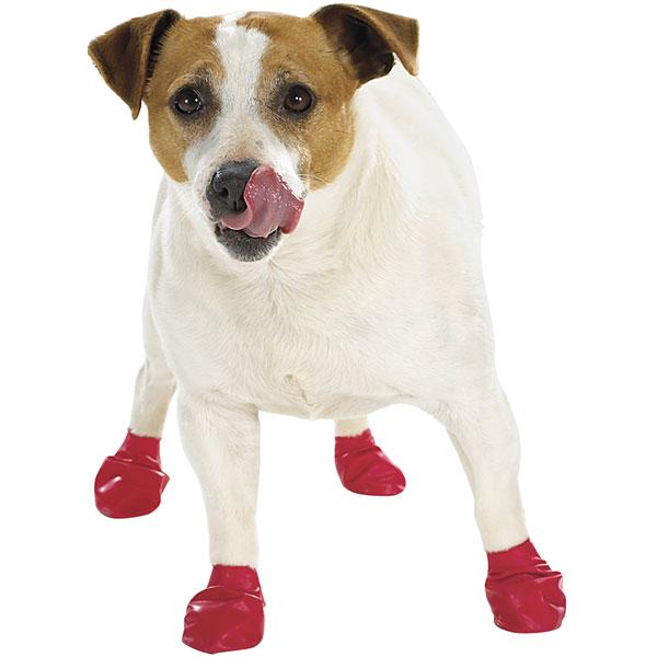Ботиночки, тапочки, обувь для собаки.  Выкройка 6.